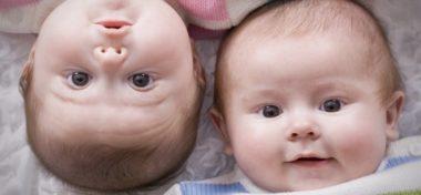 Двойняшки и близняшки в чем разница между детьми